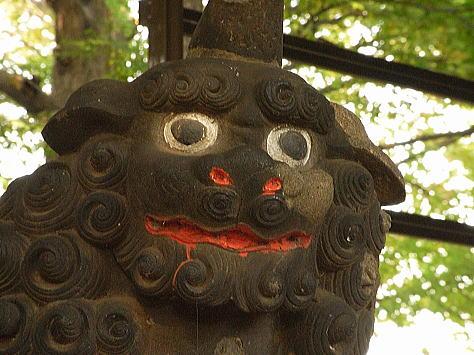Yanakakomainu