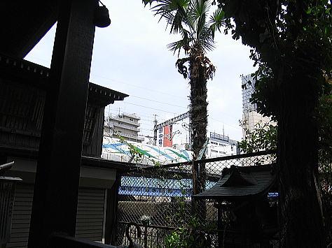 0523_kandagawa3_3_2