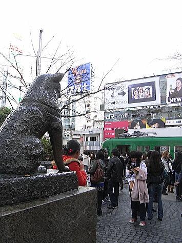 1212_shibuya2_2