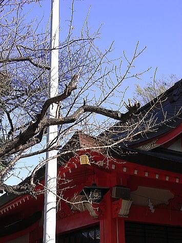 0116_higashishinjuku1_2