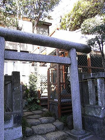 0124_wakamatsukawada4_1