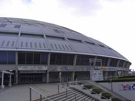2011_11_20_8751