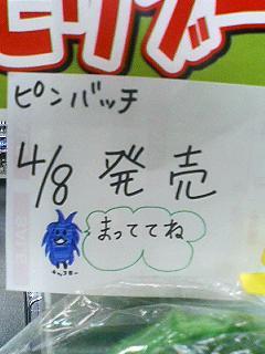 Morikoro_2